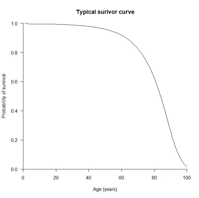 Survivor curve
